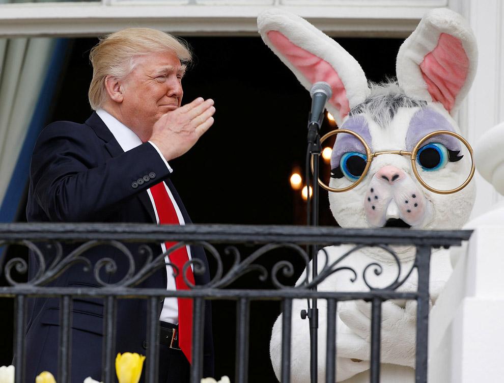 28. 29 апреля станет 100-м днем ??правления Дональда Трампа. (Фото Saul Loeb):