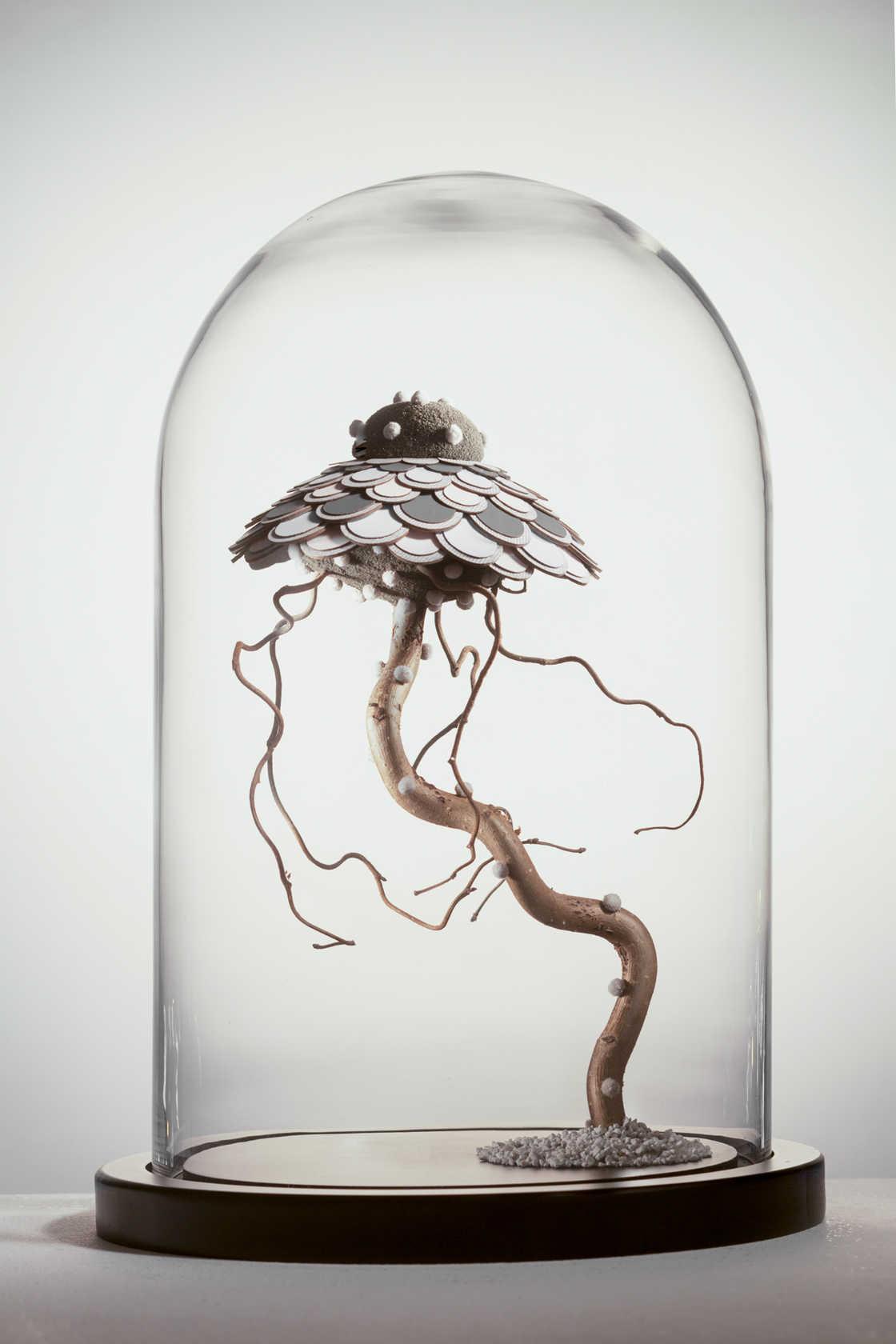 The strange feathered creatures of Noreen Loh Hui Miun