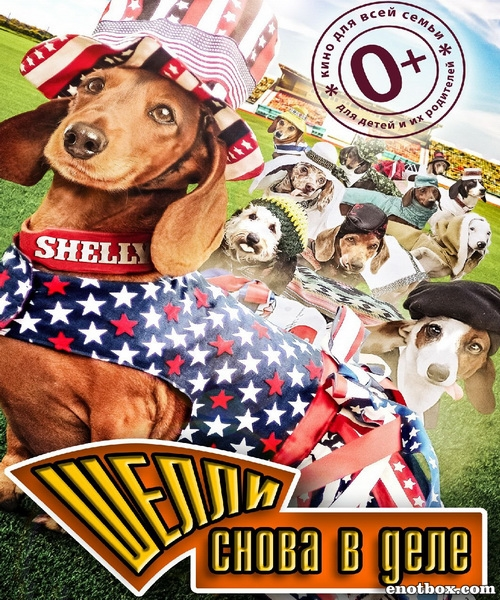 Шелли снова в деле / Wiener Dog Internationals (2015/WEB-DL/WEB-DLRip)