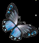 Melaniesthings-vlinder.png