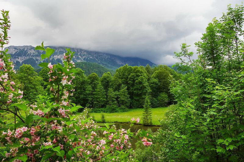Природа Баварии