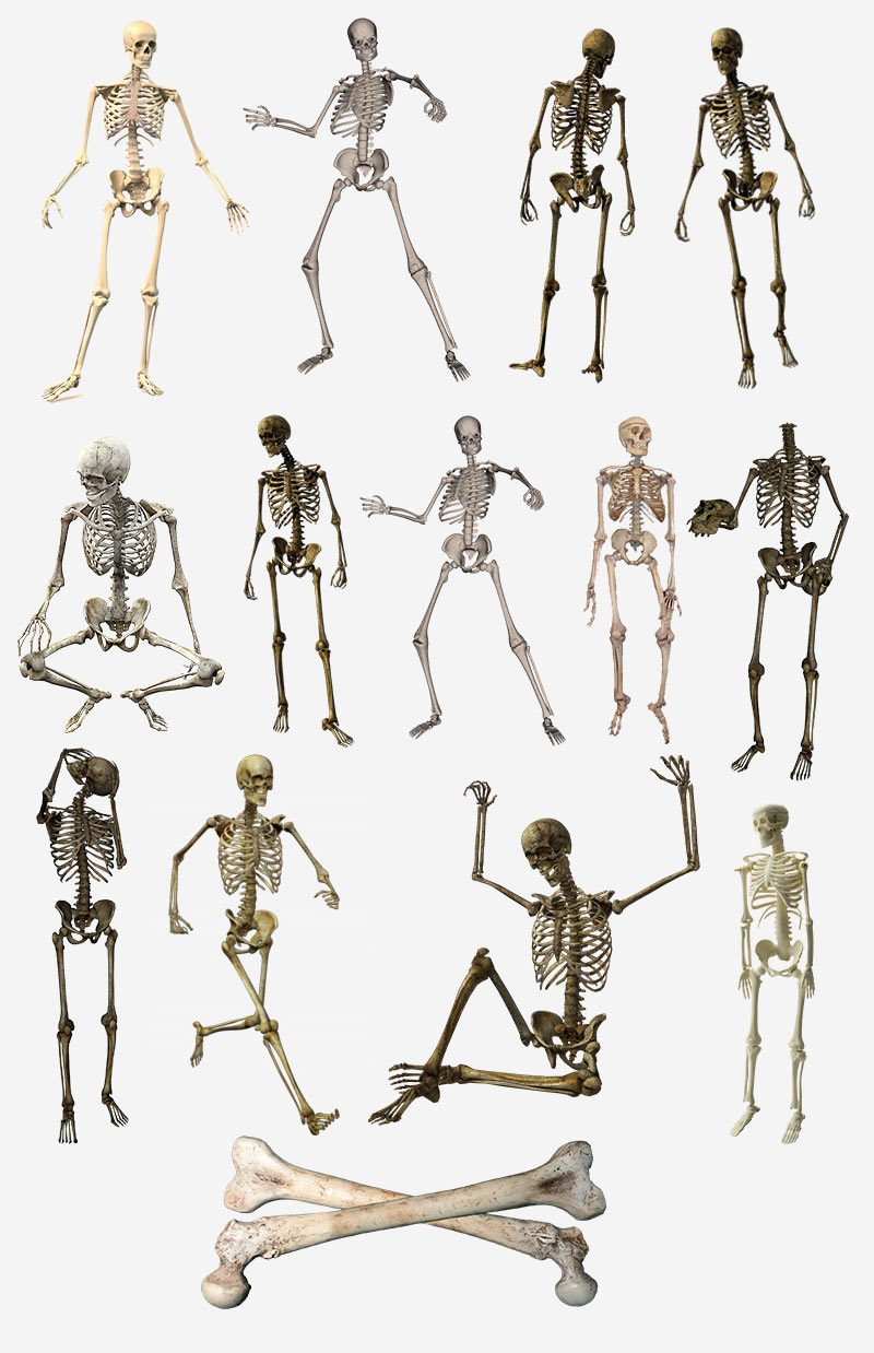 Скелеты и кости на прозрачном фоне, PNG