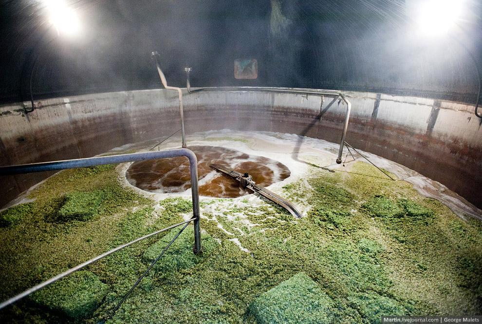 12. Хмель используются прессованный. Шишки ароматные и маслянистые.