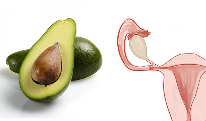 4. Авокадо — матка Авокадо по форме напоминает матку и очень полезен для сохранения репродуктивного
