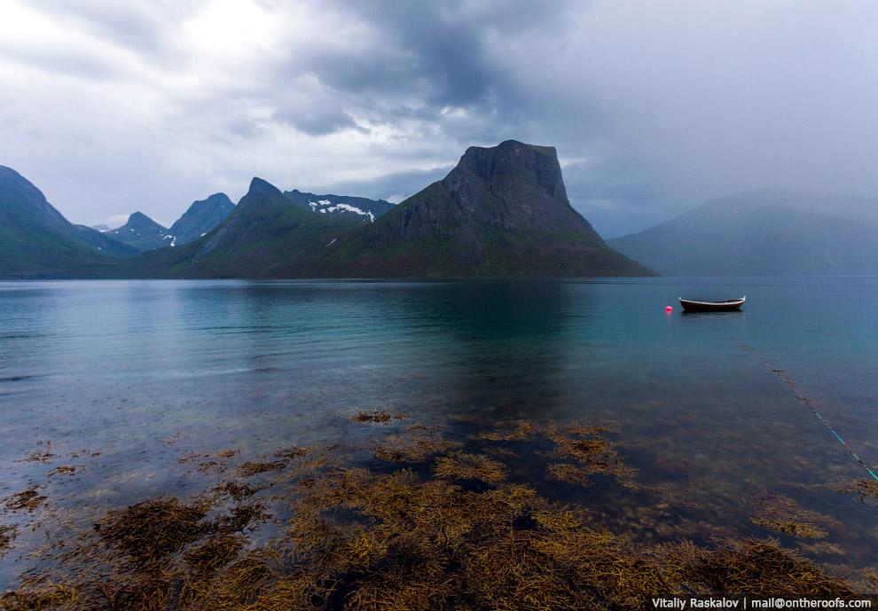 19. Норвегию очень любят пожилые туристы из Нидерландов, Дании и Германии. Процентов 80% турист