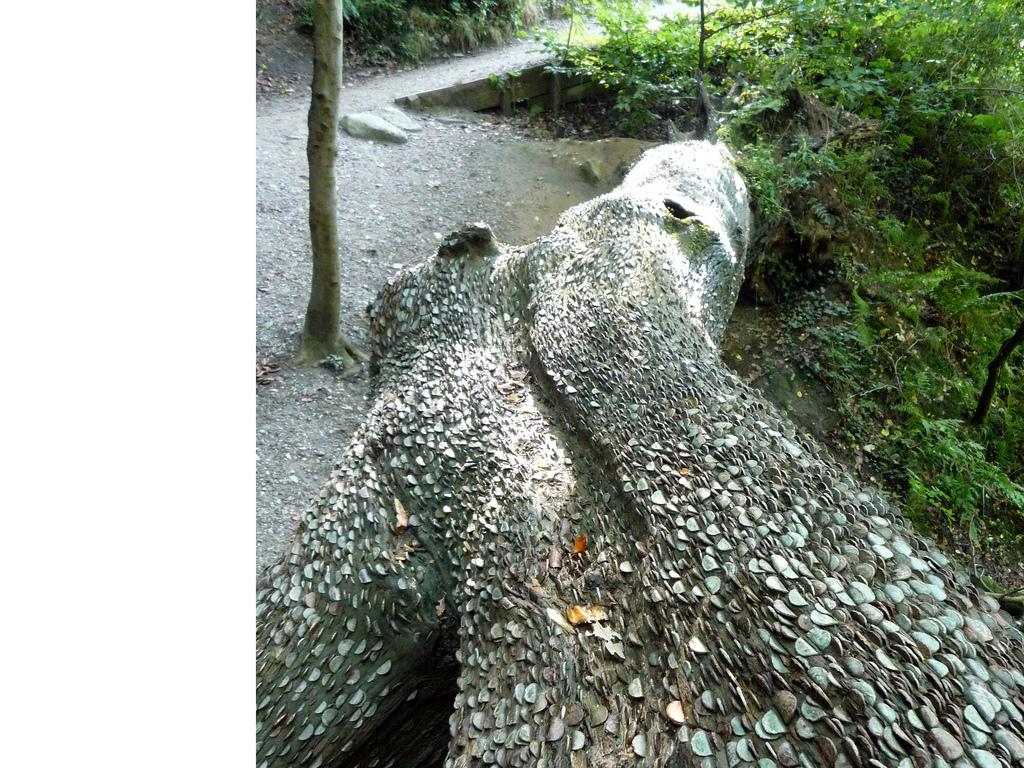 10. Само дерево – длинное и стало похоже на какой-то редкий вид ящерицы, а монеты стали ее чеш