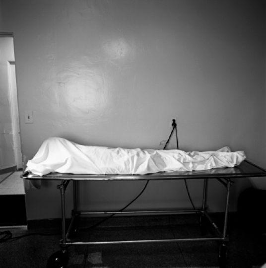 Труп юного петербуржца отыскали вНИИэкспериментальной медицины