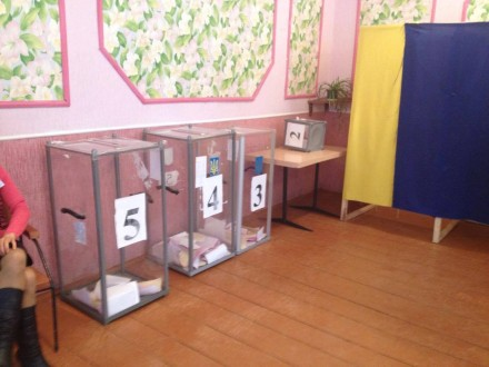 Наместных выборах вЖитомирской области выдавали бюллетени без паспортов