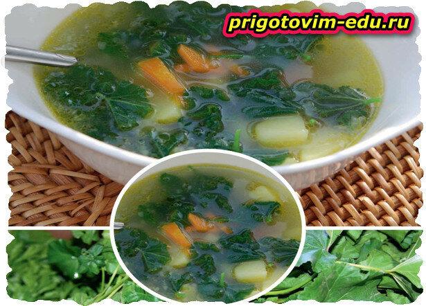 Суп с мальвой - пипертом - просвирняком (Malva parviflora)