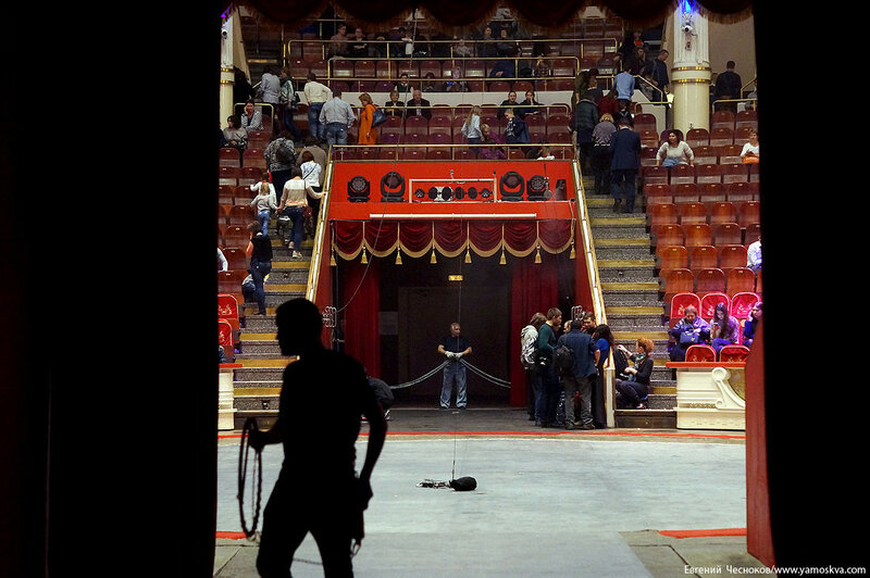 Осень. БРАВО в Цирке Никулина. 14.10.16.03..jpg