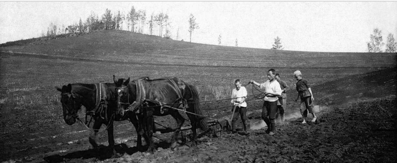 1922. Тургояк. Детская трудовая колония в поселке Тургояк. Внесение суперфосфата в почву перед посадкой картофеля