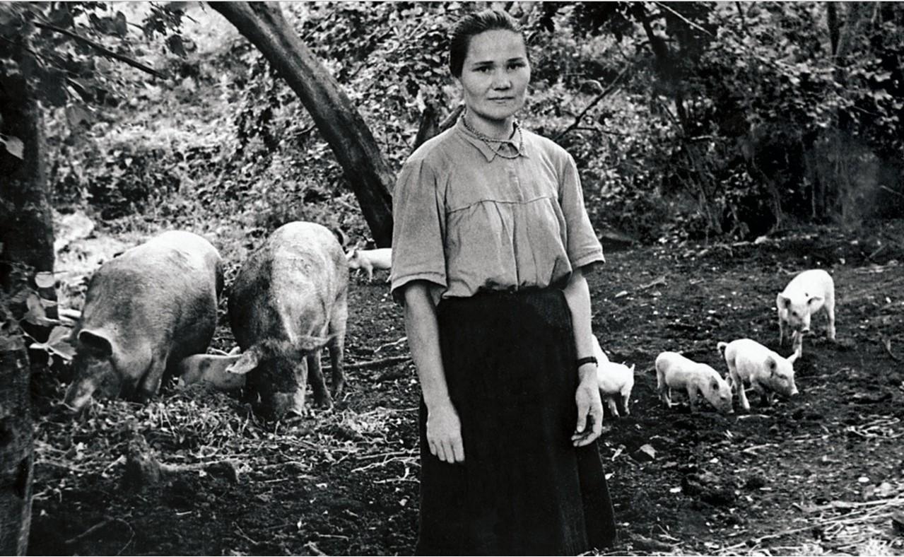 Село Айлино. Свинарка Н. И. Корлыханова