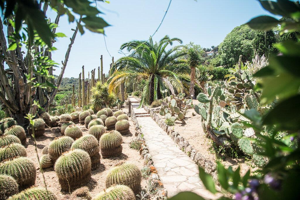 В парке кактусов «Cactualdea Park»