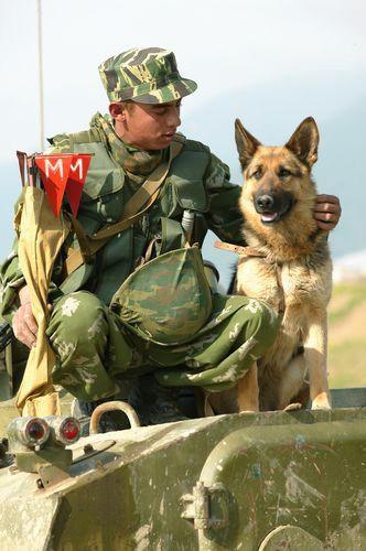 Открытки. 28 мая. С днем пограничника! Пограничник с собакой.JPG