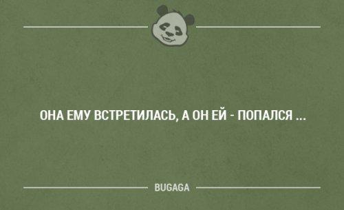 Смешные фразы в картинках с надписями