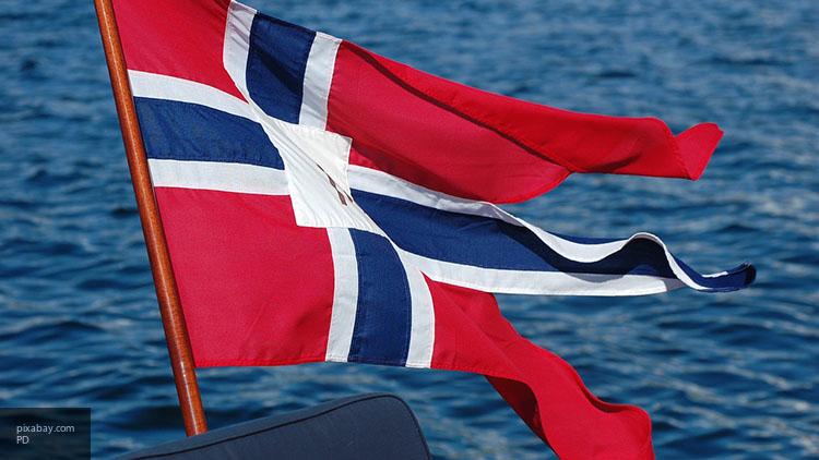 Милиция обезвредила взрывное устройство вцентре Осло