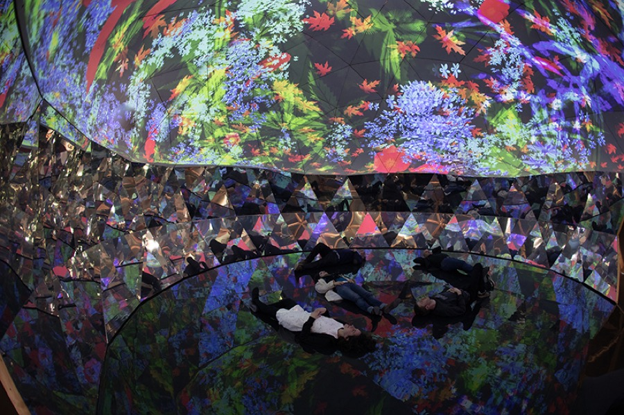 Mesmerizing Vegetal Mapping under a Dome by Miguel Chevalier