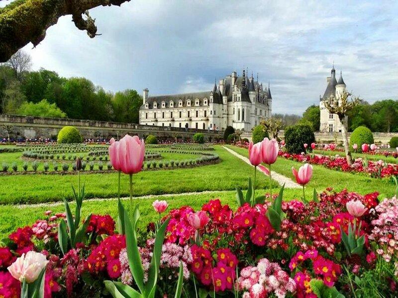 Цветы замка Шенонсо.