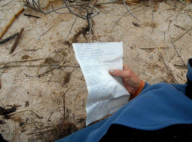 Листок в руке на фоне песка ... DSCN1698.JPG
