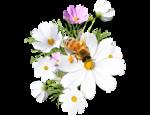 fleurs_abeille.png