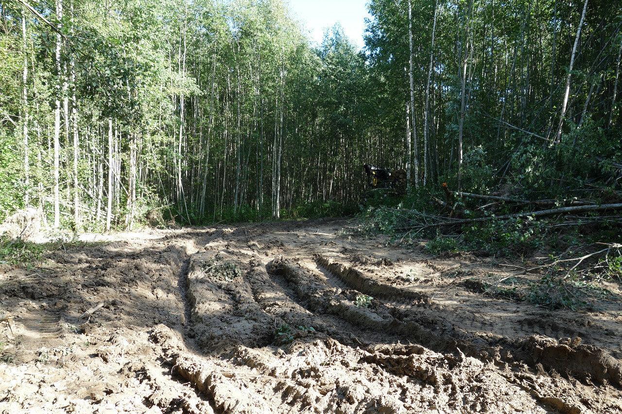 водитель лесовоза вряд ли ждал велосипед