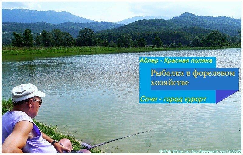 рыбалка на форелевом хозяйстве в адлере цена