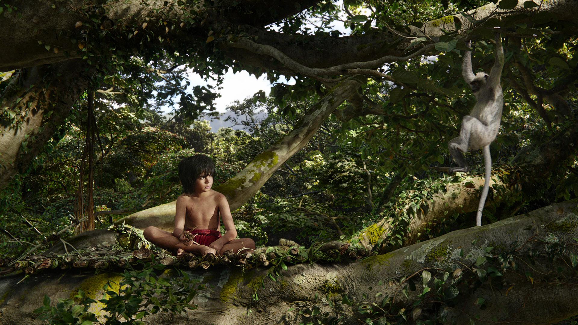 Братва из джунглей 3d скачать торрент.