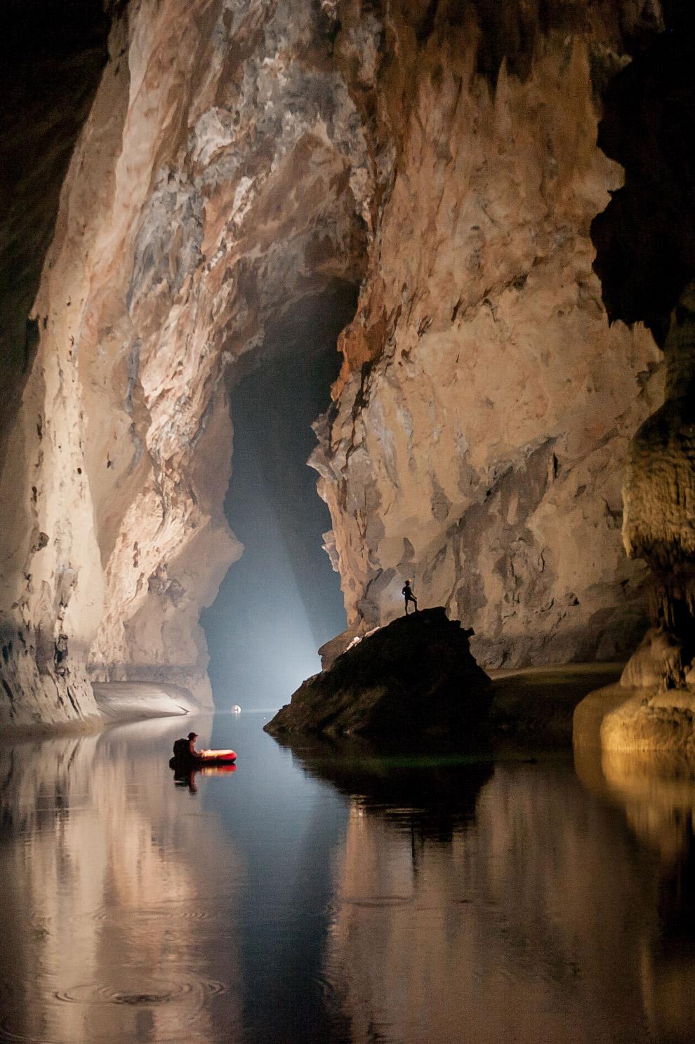 10. Пещерные виды адаптируются к полной темноте, причем многие из них утрачивают органы зрения