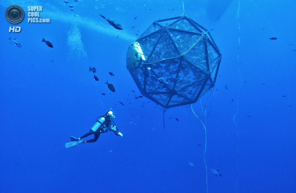Мобильная клетка для рыбы, разработанная Lockheed Martin для решения экологических проблем. Сист