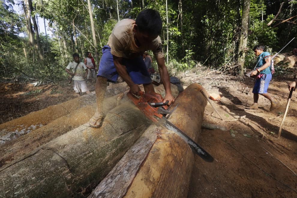 16. …техника сжигается. (Фото Reuters | Lunae Parracho):
