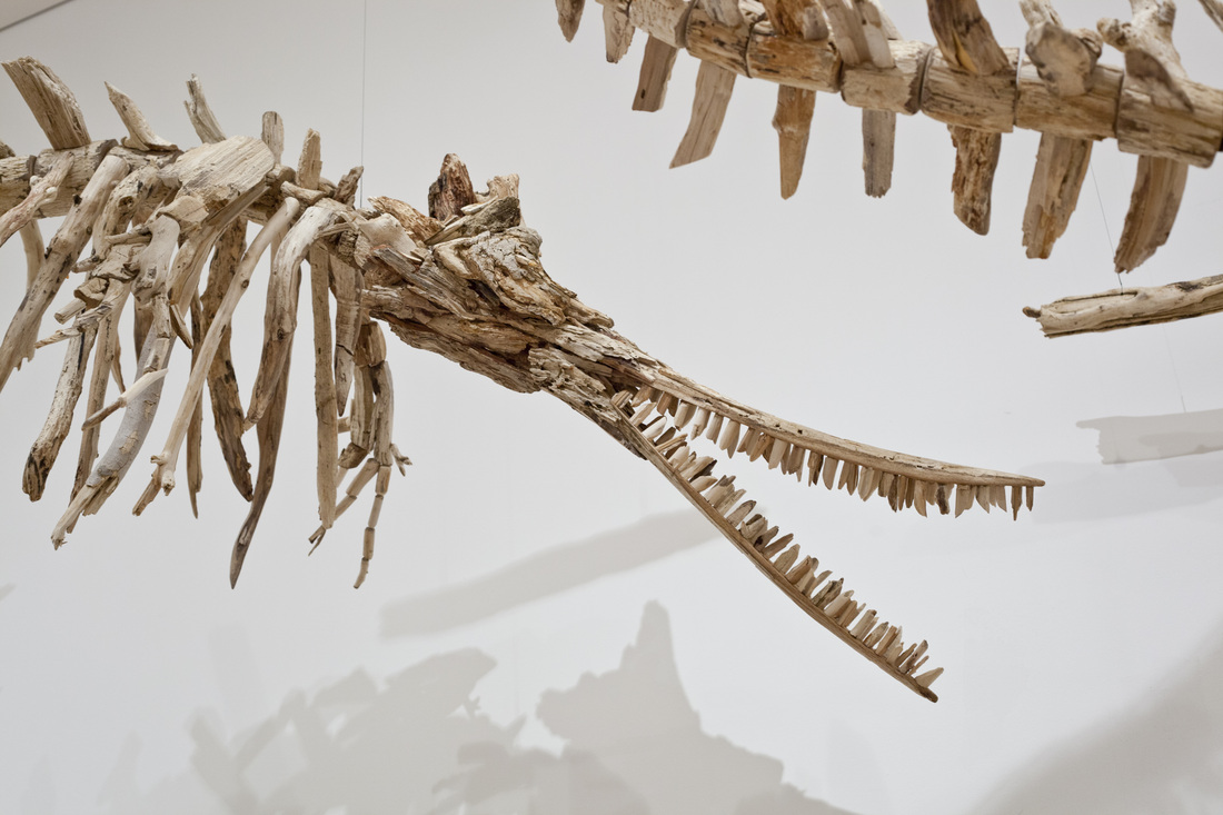 Flight of the Baji: A Pod of Suspended Driftwood Dolphin Skeletons Flies through the Baltimore Museum of Art