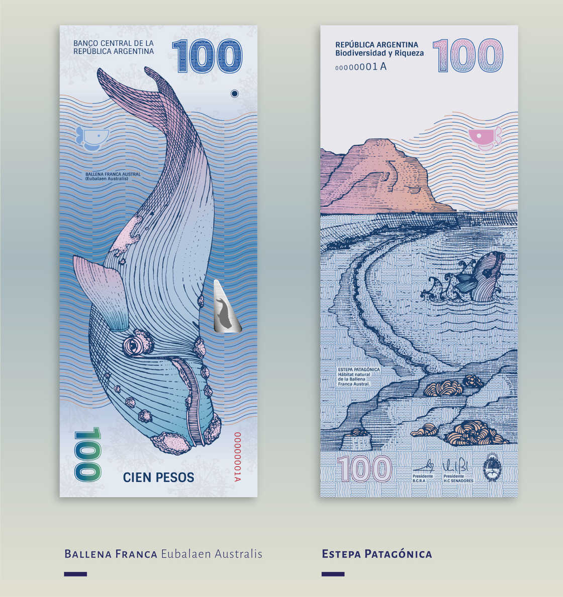When two designers imagine the future Argentinean bank notes