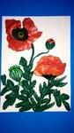 """Старшая группа """"Цветик-семицветик"""" (рук. Тырина Елена Николаевна) - """"Красные маки"""""""
