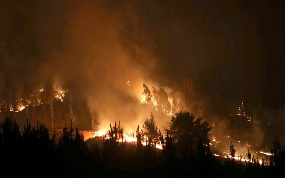Сильнейшие лесные пожары в Чили