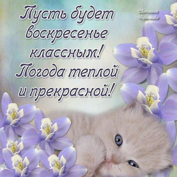 https://img-fotki.yandex.ru/get/194869/27156178.27b/0_1aee07_d3ae5aef_XL.jpg
