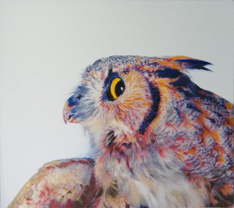 Красивая и почти реальная сова! Фотореализм   Джон Пусатери