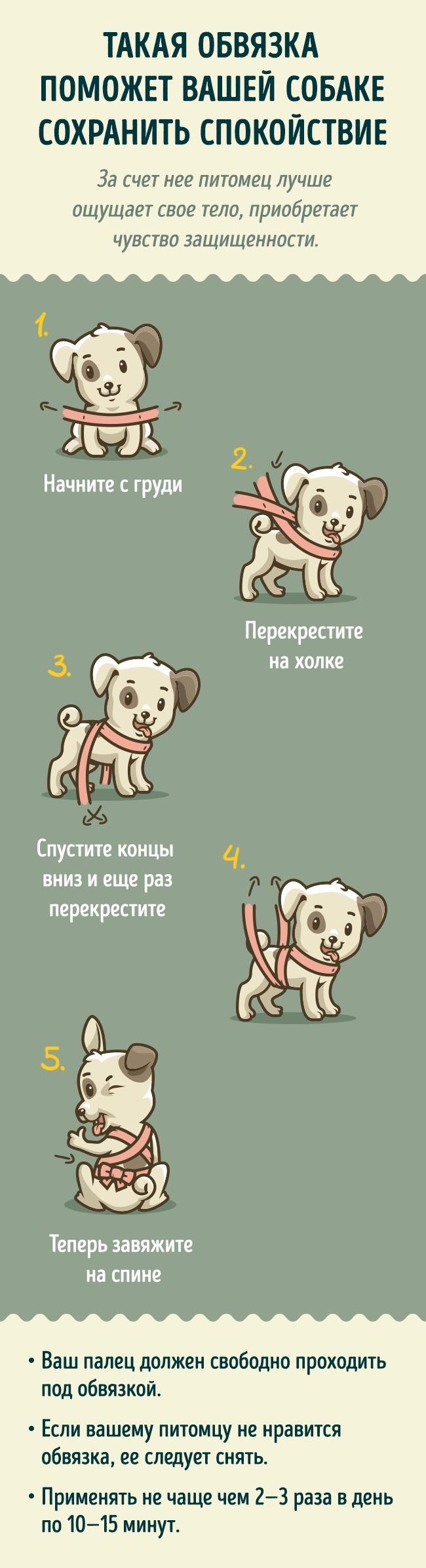 Источник thedodo Иллюстратор Victor Senin специально для fotojoin.ru