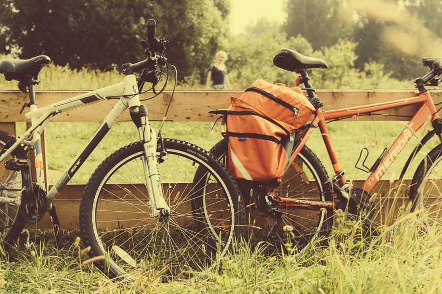 Дубна, поля, портреты, велосипед, вело, памятник