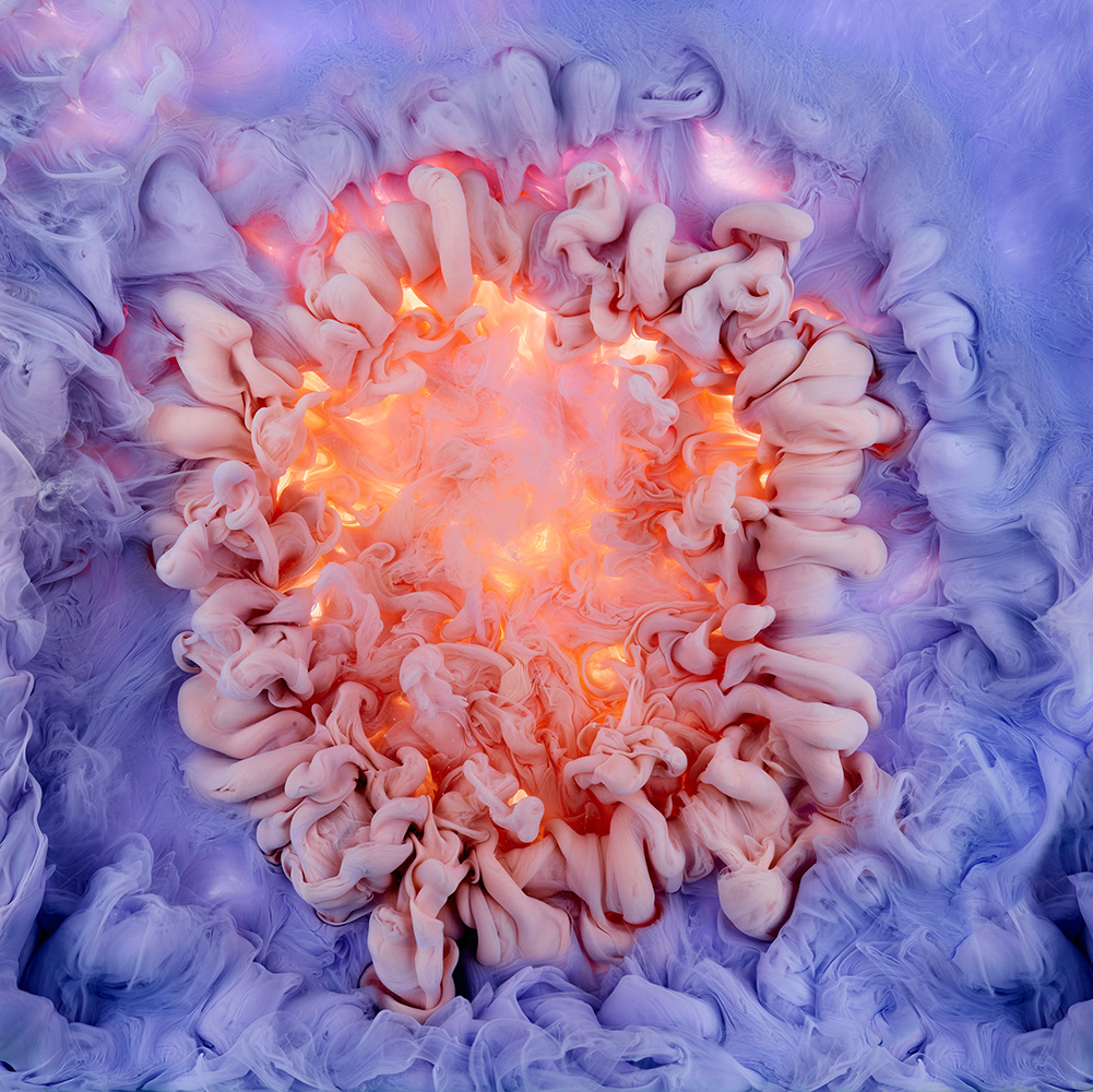 Aqueous Roses and Liquid Blooms Photographed by Mark Mawson