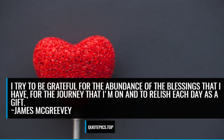 I try to be grateful for the abundance of the blessings that I have, for the journey that I'm on and to relish each day as a gift. ~James McGreevey