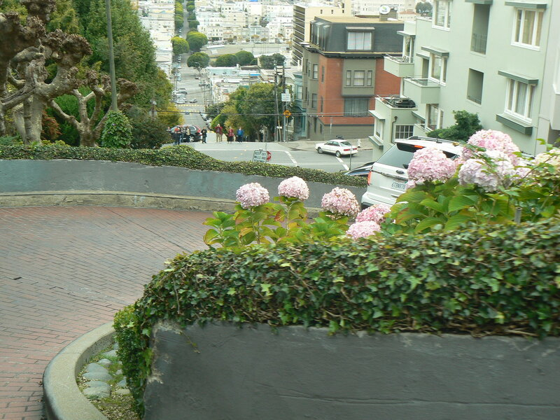 view (1).jpg