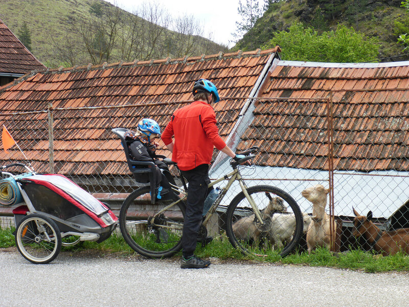 велопоход с ребенком с велокреслом и велоприцепом thule