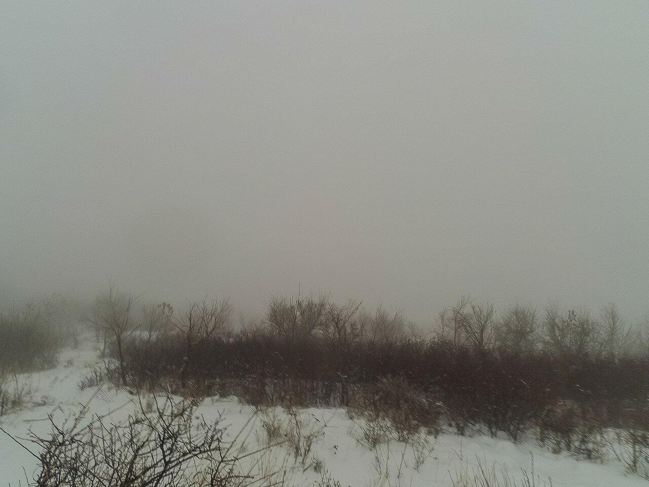 Туманные перспективы фото 5