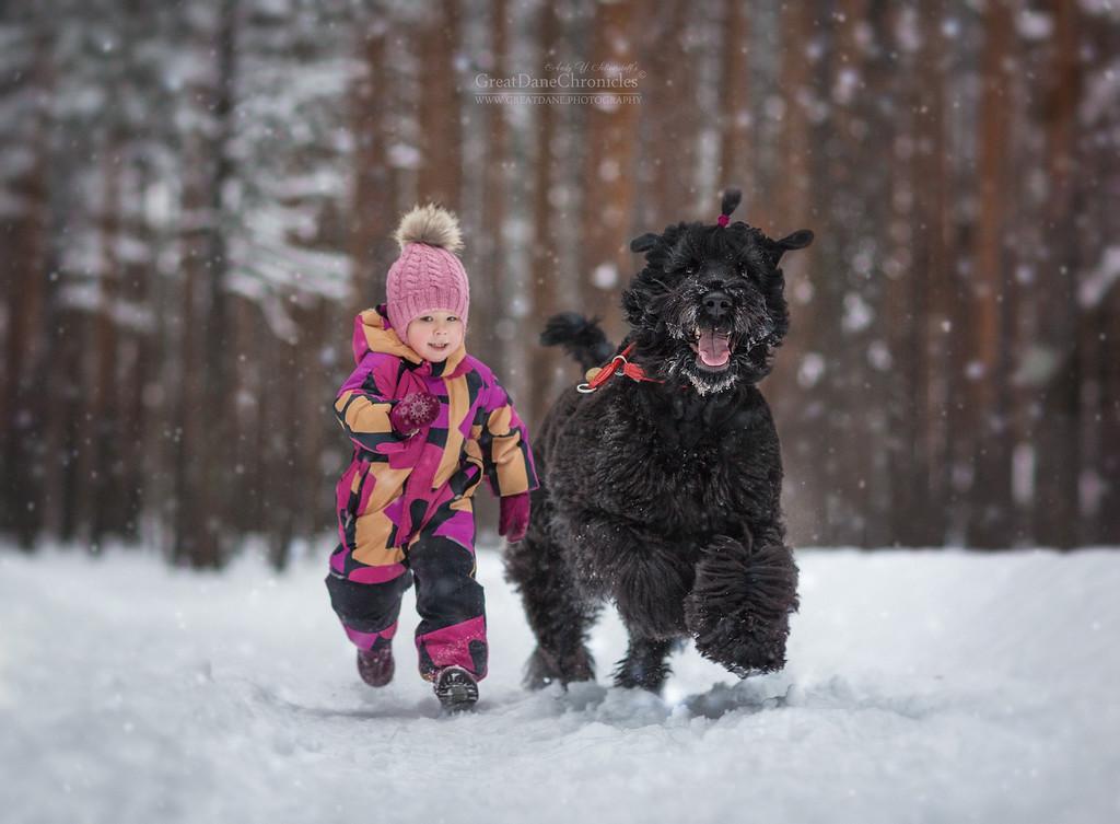 Маленькие дети и их большие собаки / Andy Seliverstoff