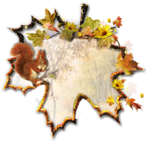 foglie___4_.png