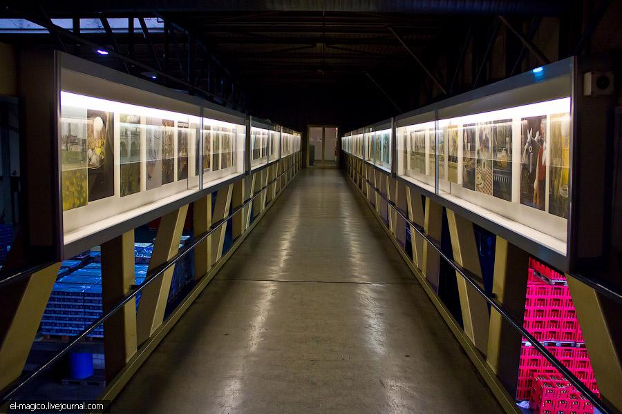 Самый главный пивной завод Швейцарии в закатных лучах солнца:
