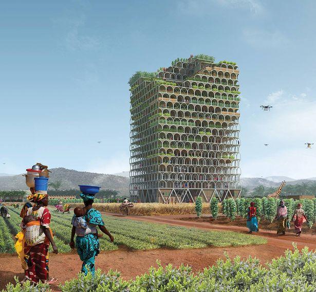 Первое место присудили проекту здания, в котором можно выращивать сельскохозяйственные культуры и пл