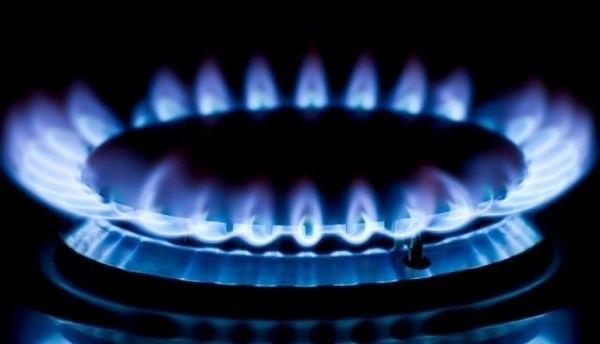 Хованская предлагает выделять субсидии малоимущим гражданам насмену газовых плит