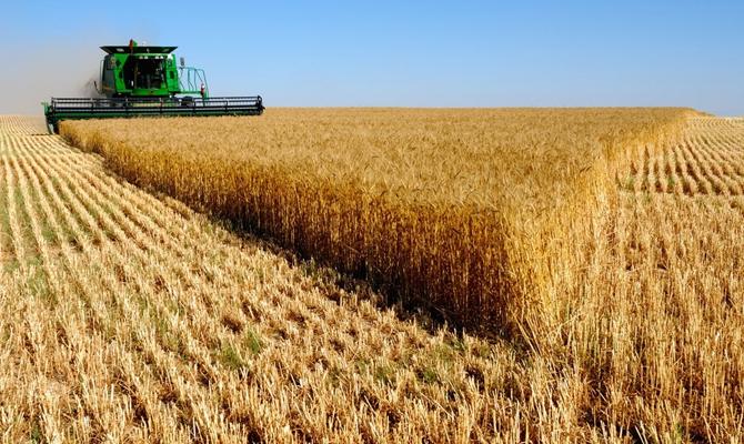 Крупнейший украинский агрохолдинг получил $8 млн убытка