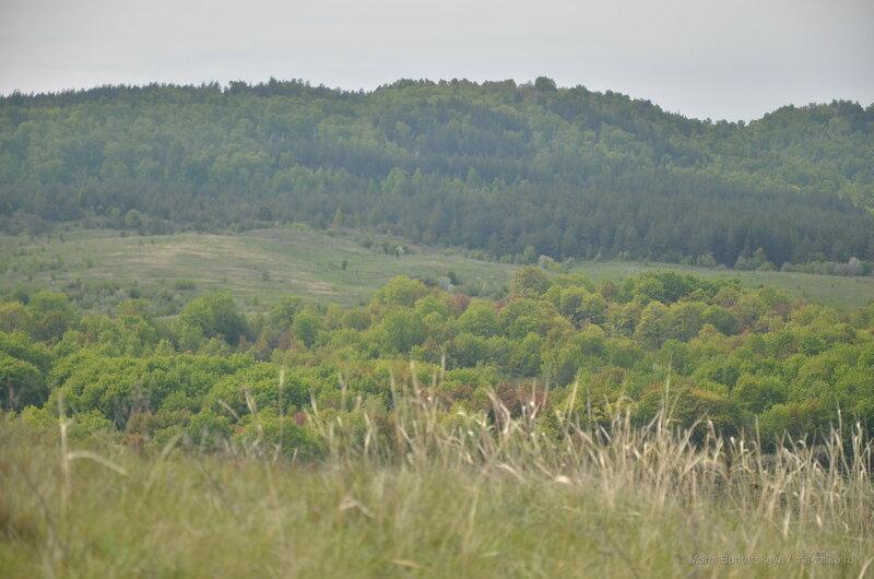 Национальный парк 'Хвалынский', Хвалынск, 18 мая 2017 года